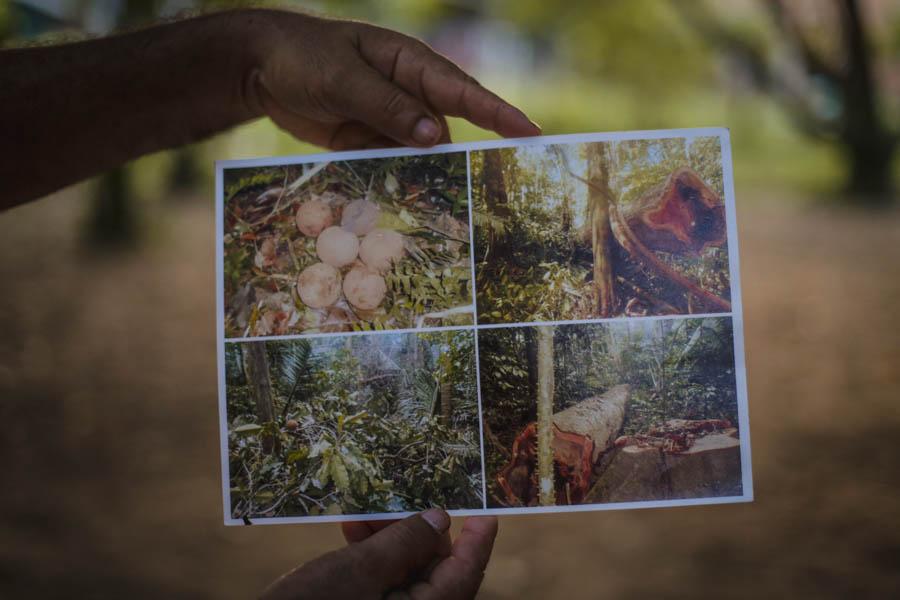 No topo, José Marques; nas duas fotos seguintes, registros de irregularidades e violações de direitos cometidos pelos grileiros, que derrubaram árvores e destruíram a ponte de acesso ao local. Fotos: Carol Ferraz / Amigos da Terra Brasil