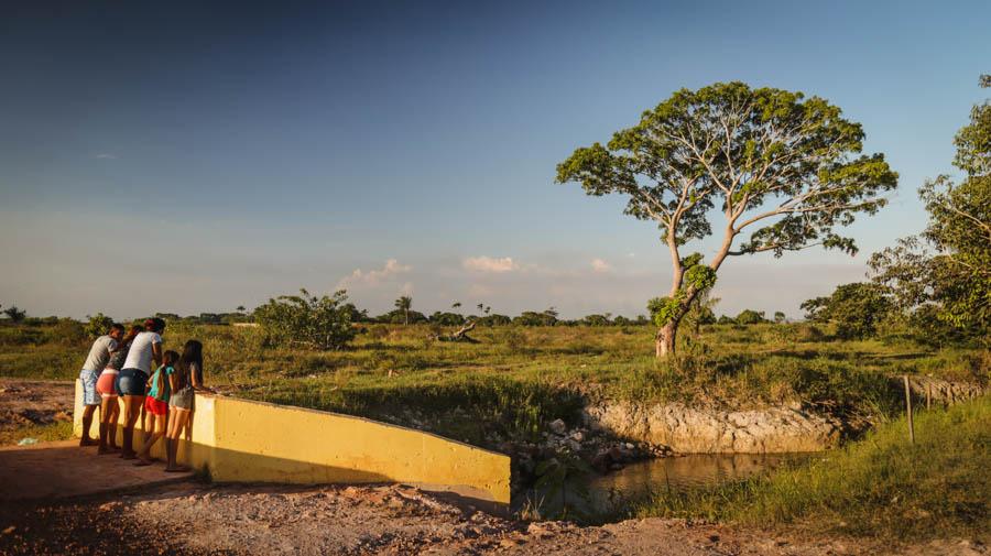 Desmatamento gerado pela expansão da soja, além do alto uso de agrotóxicos no cultivo do grão, impactam as comunidades da região. Foto: Carol Ferraz / Amigos da Terra Brasil