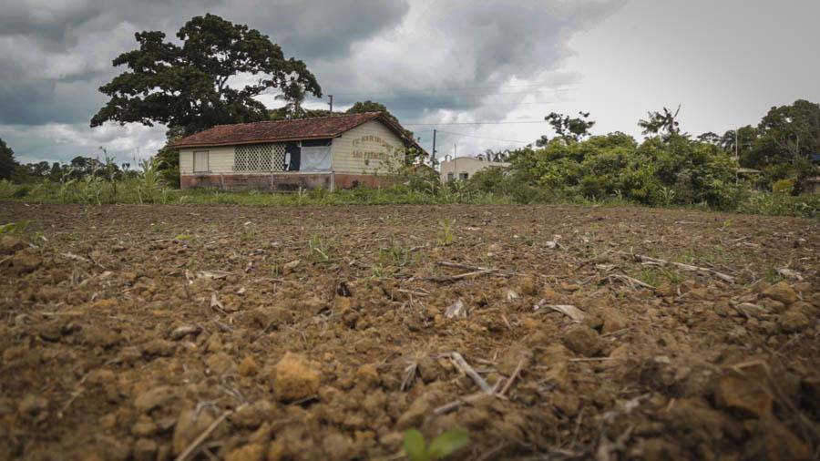 Escola cercada por soja: uso de veneno não respeita horário escolar e crianças são diretamente atingidas. Foto: Carol Ferraz / Amigos da Terra Brasil
